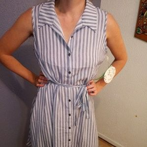 Striped Rockabilly Button Up Collared A-Line Dress